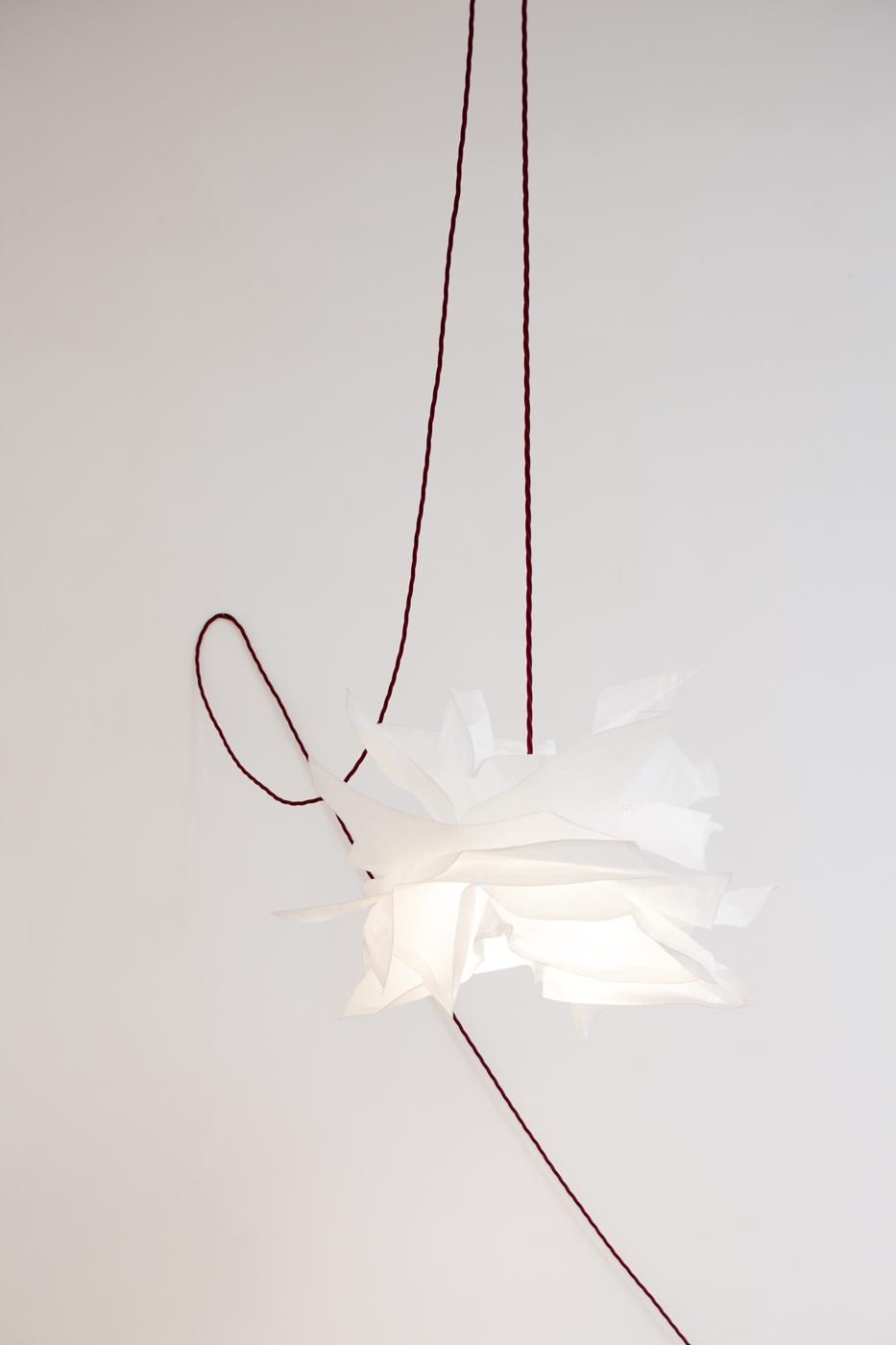 sans titre (lamp hanging)